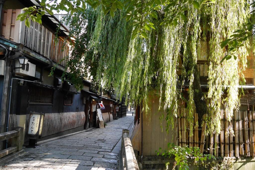 京都にて趣味ブログ交流会をまったり開催してきた。